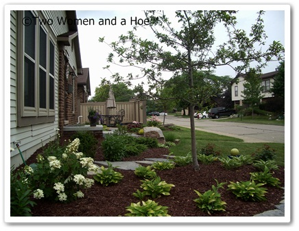 ornamental trees for the landscape  two women and a hoe®, Natural flower