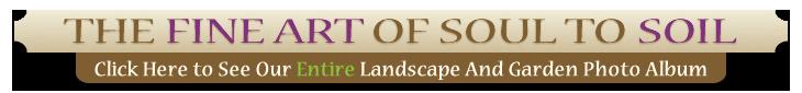 portfolio banner