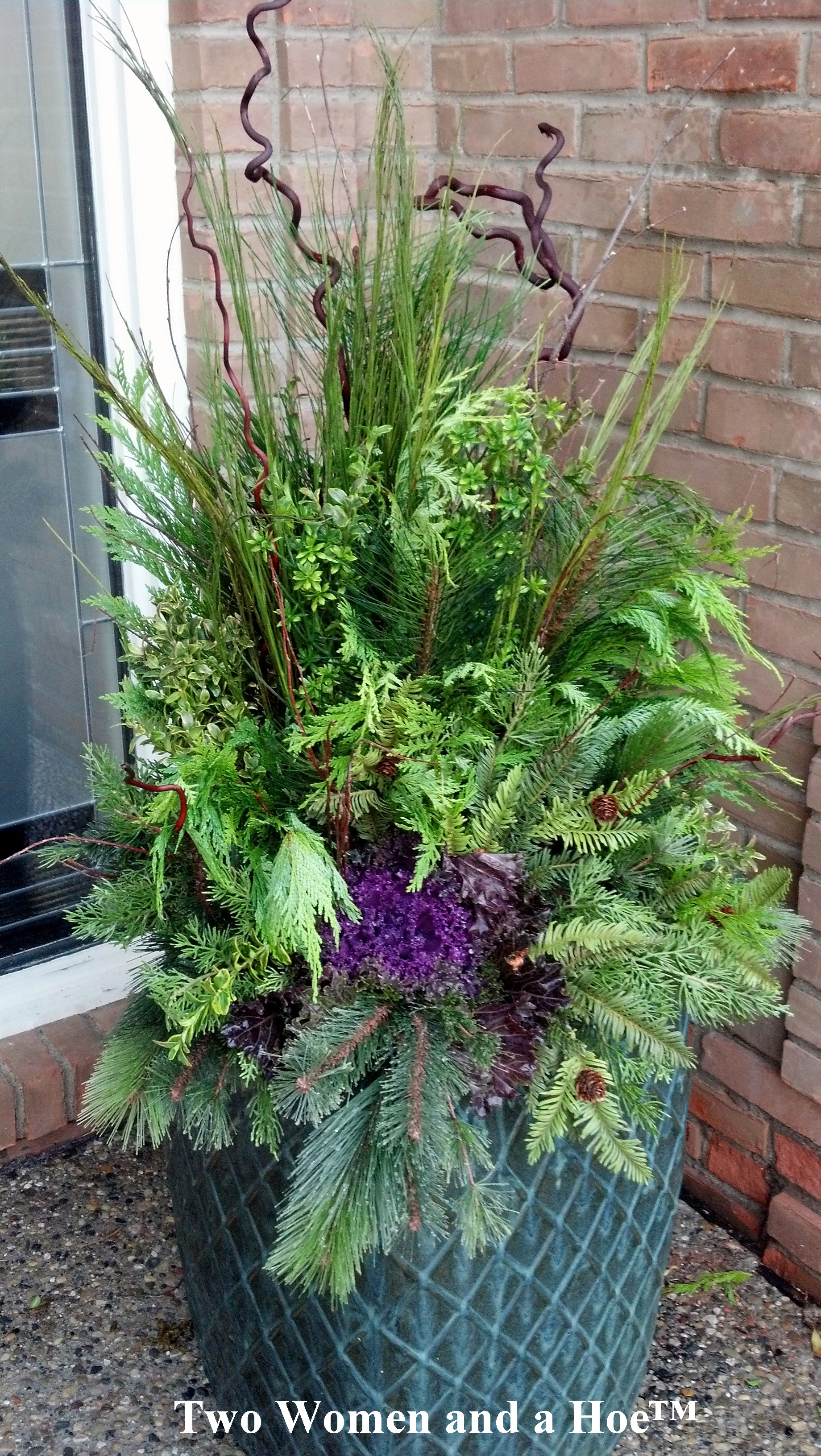 Winter container garden ideas winter container garden for Container garden ideas
