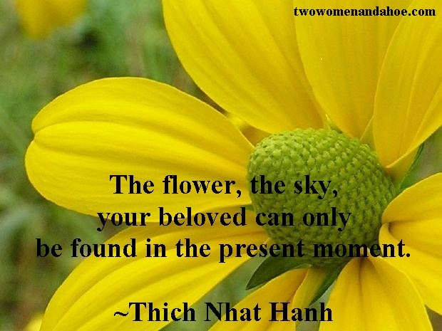 The Flower Quote