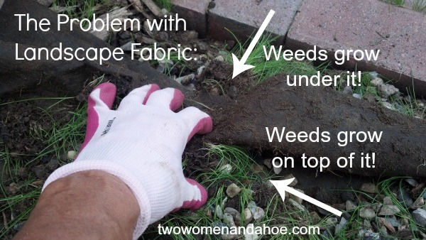 Landscape Fabric - Weed Barrier Cloth Does Not Work