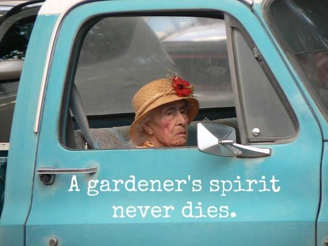 gardeners spirit