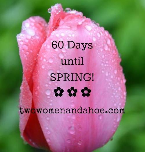 spring 60 days