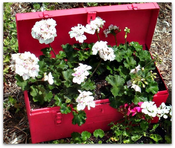 lynns tool box