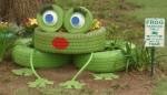 frog 7