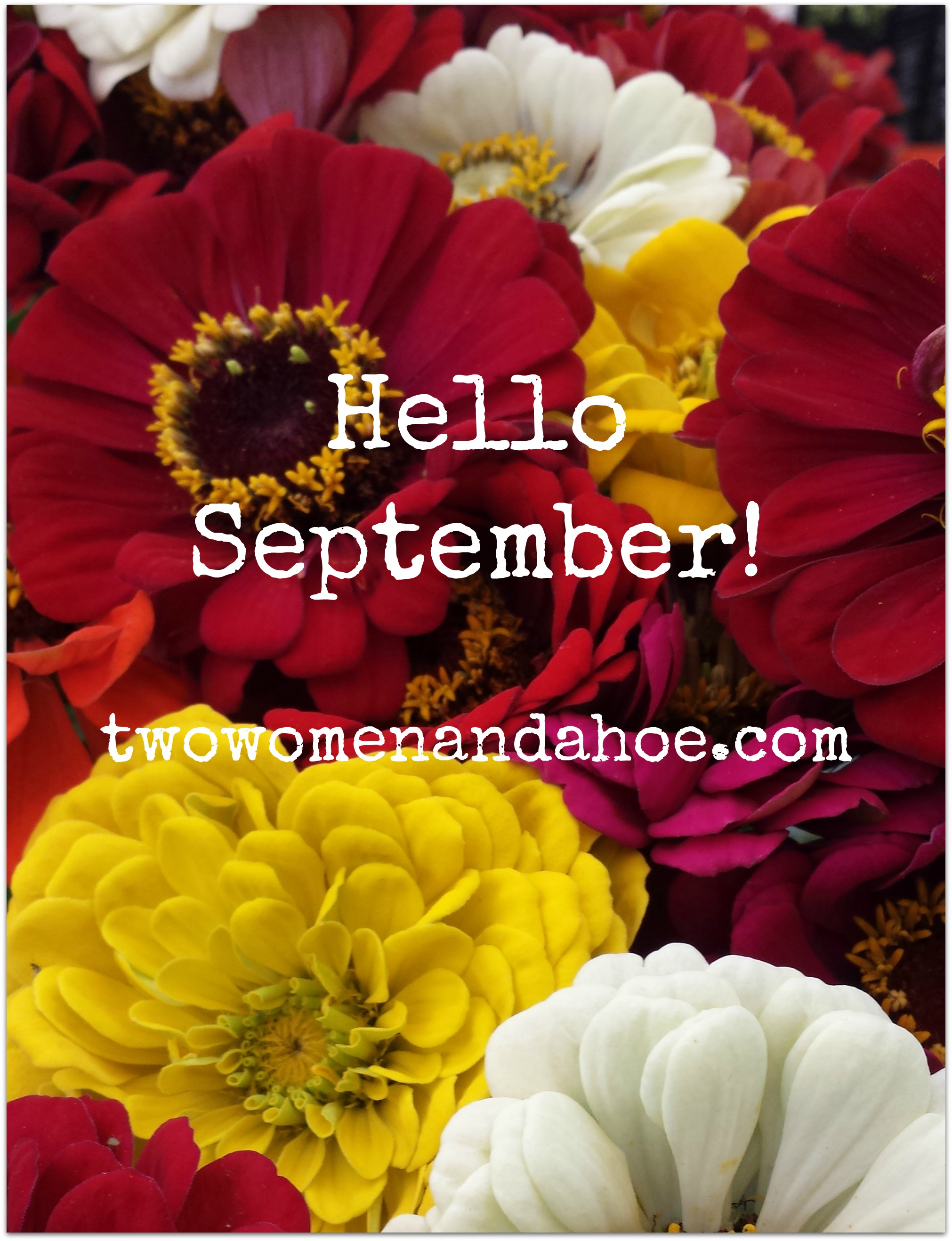 Goodbye AUGUST, Hello SEPTEMBER! - Two Women and a Hoe®