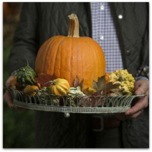 pumpkin tray