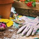 Gloves-for-Gardening
