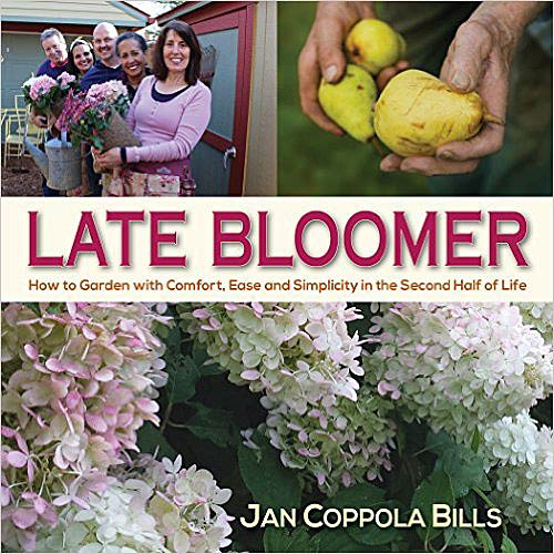 Late Bloomer Book Cover